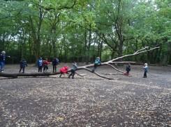 granton-primary-free-nature-school-forest-school-streatham-common-lambeth-1