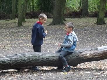 granton-primary-free-nature-school-forest-school-streatham-common-lambeth-9