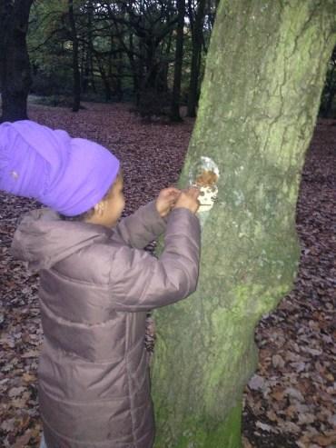 tree art in woodland