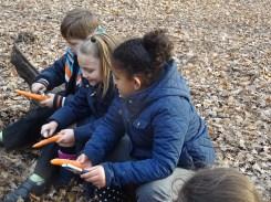 free-forest-school-activity-for-primary-school-children-on-streatham-common-lambeth-14