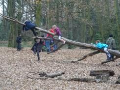 free-forest-school-activity-for-primary-school-children-on-streatham-common-lambeth-2
