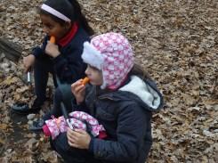 free-forest-school-activity-for-primary-school-children-on-streatham-common-lambeth-8