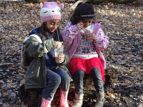 free-forest-school-activity-for-primary-school-students-streatham-common-lambeth-12