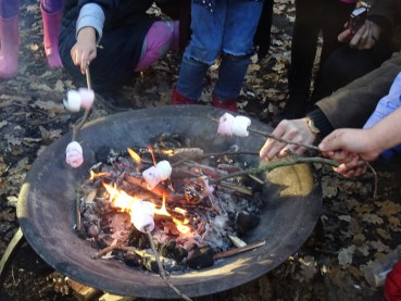 free-forest-school-activity-for-primary-school-students-streatham-common-lambeth-19
