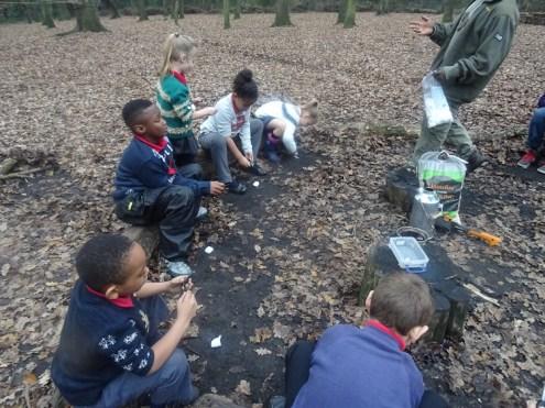 last-free-forest-school-activity-for-primary-school-children-on-streatham-common-lambeth-9