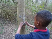 Forest school activity at eardley road sidings nature reserve Lambeth-7