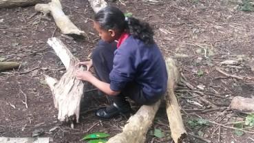 Forest School easter egg hunt Granton Primary School Lambeth-3