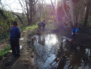 Granton Primary 2nd Year Forest school activity Lambeth-10