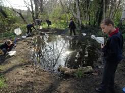 Granton Primary Year 5 students pond dipping Lambeth-6