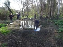 Granton Primary Year 5 students pond dipping Lambeth-7