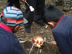 Granton Primary school after school forest school Lambeth London-13