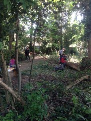 Nature Conservation Knights Hill Wood Lambeth London -1