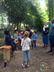 Nature Conservation Knights Hill Wood Lambeth London -2