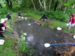 after school club pond dipping Lambeth London-4