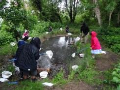 after school club pond dipping Lambeth London-5