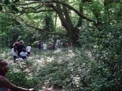 after school free activity Fern lodge Streatham Common Lambeth London-6