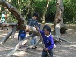 Free after school forest school Fern Lodge Streatham Common Lambeth London-3