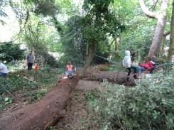 free family nature activity Knight Hill Wood Lambeth London-3