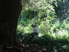 Free family nature activity Knights Hill Wood West Norwood Lambeth London-2