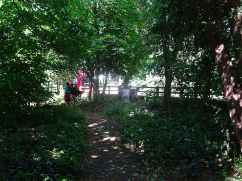 Free family nature activity Knights Hill Wood West Norwood Lambeth London-9