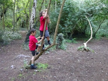 Free After School Forest School Granton Primary Lambeth London-14