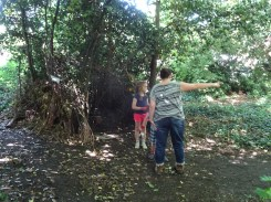 Free family nature Knights Hill Wood West Norwood Lambeth London-3