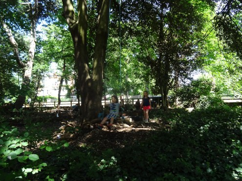 Free family nature Knights Hill Wood West Norwood Lambeth London-9