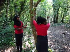 Free after school forest school club Streatham Lambeth London-4