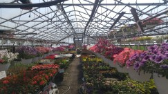 Nature Works Spring Nursery
