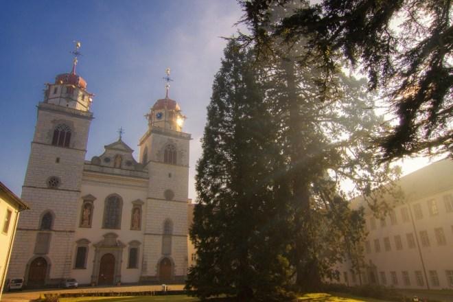 Kloster Rheinau im Morgennebel
