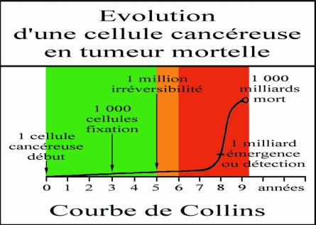 Courbe de Collins