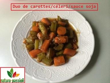 Duo de carottes et de céleri