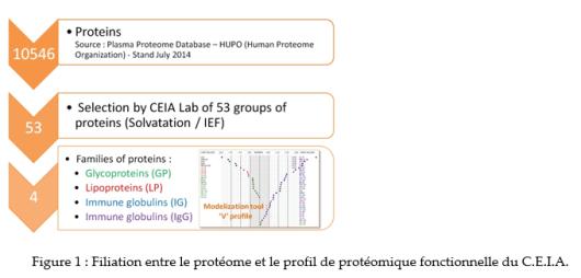 Figure 1_Filiation entre protéome et profil protéomique