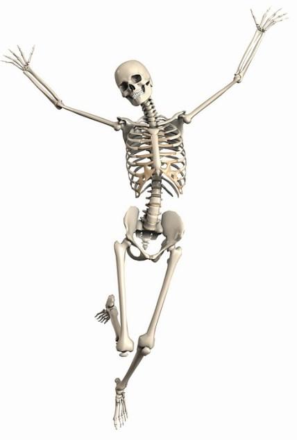 skeleton-2504341_960_720
