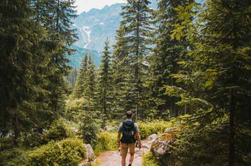 man walking on trail between trees