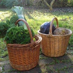 Flettekursus for begyndere (weekendkursus) @ Naturplanteskolen | Hedehusene | Danmark