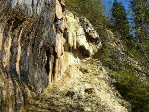 Wohl die imposanteste Ausprägung des Lingenauer Quelltuffes (Foto: Anna Pichler).