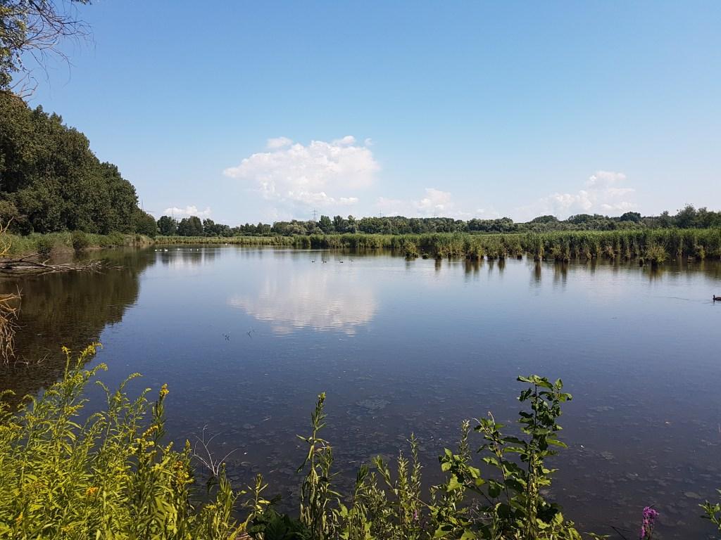 wagbachniederung titelbild naturschutzgebiet nsg
