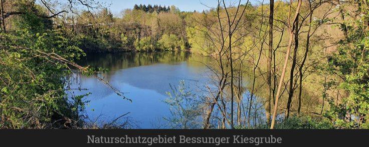 Naturschutzgebiet Bessunger Kiesgrube