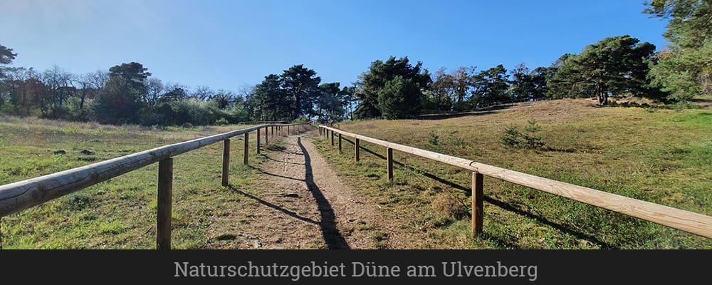 Naturschutzgebiet Düne am Ulvenberg