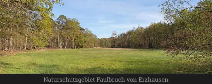 Naturschutzgebiet Faulbruch von Erzhausen