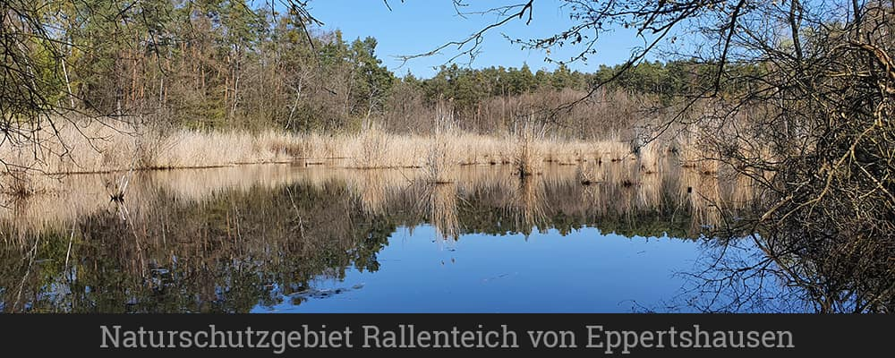 Naturschutzgebiet Rallenteich von Eppertshausen