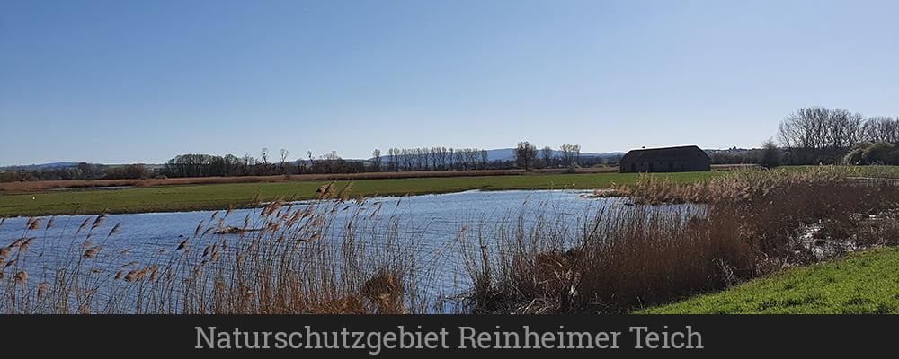 Naturschutzgebiet Reinheimer Teich