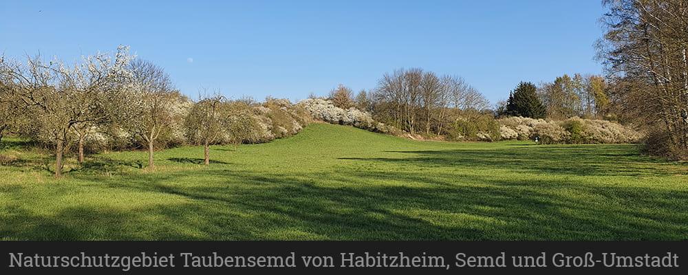 Naturschutzgebiet Taubensemd von Habitzheim, Semd und Groß-Umstadt