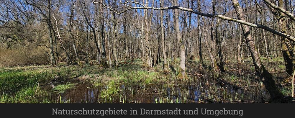Naturschutzgebiete in Darmstadt und Umgebung