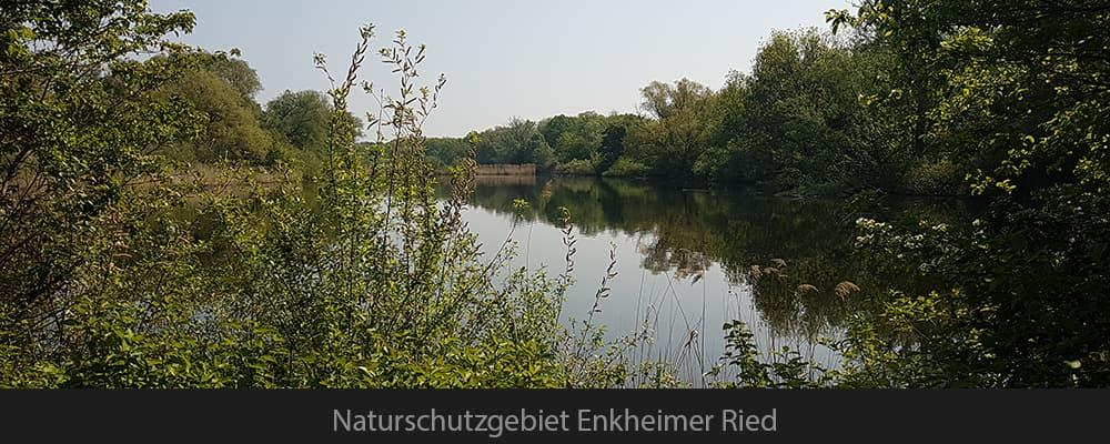 Naturschutzgebiet Enkheimer Ried