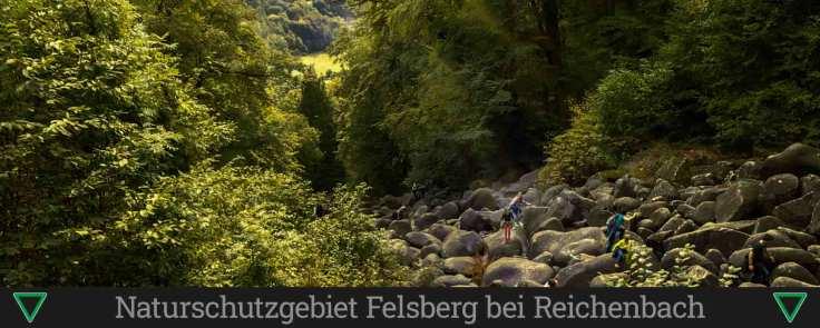 Naturschutzgebiet Felsberg bei Reichenbach