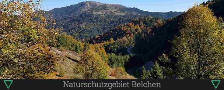 Naturschutzgebiet Belchen