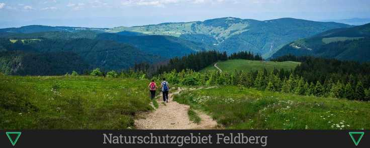 Naturschutzgebiet Feldberg