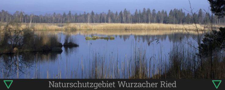 Naturschutzgebiet Wurzacher Ried